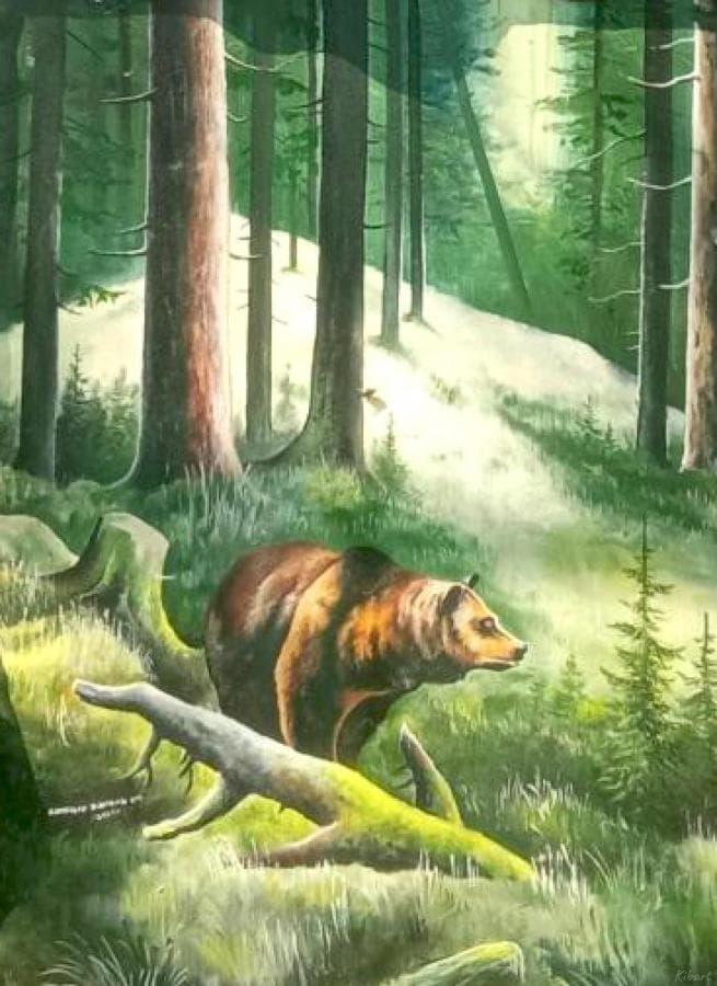 Закарпатские леса