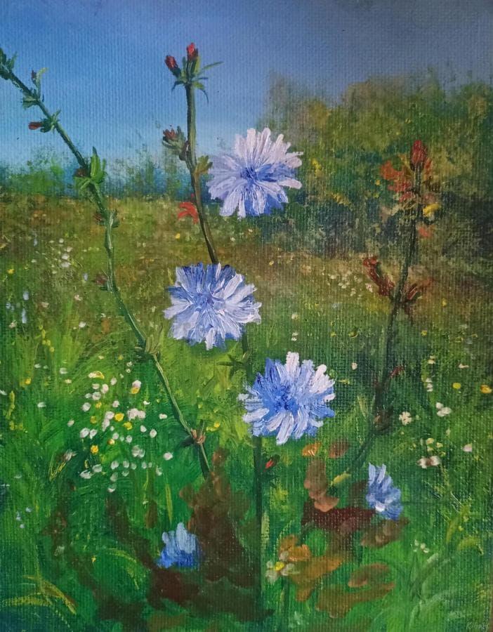 Цветы лето