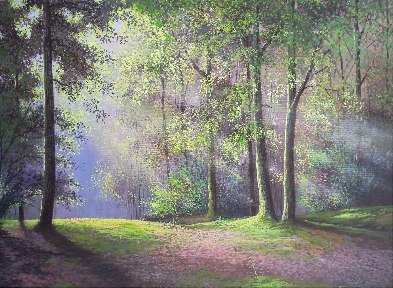 Луч света лес озаряет