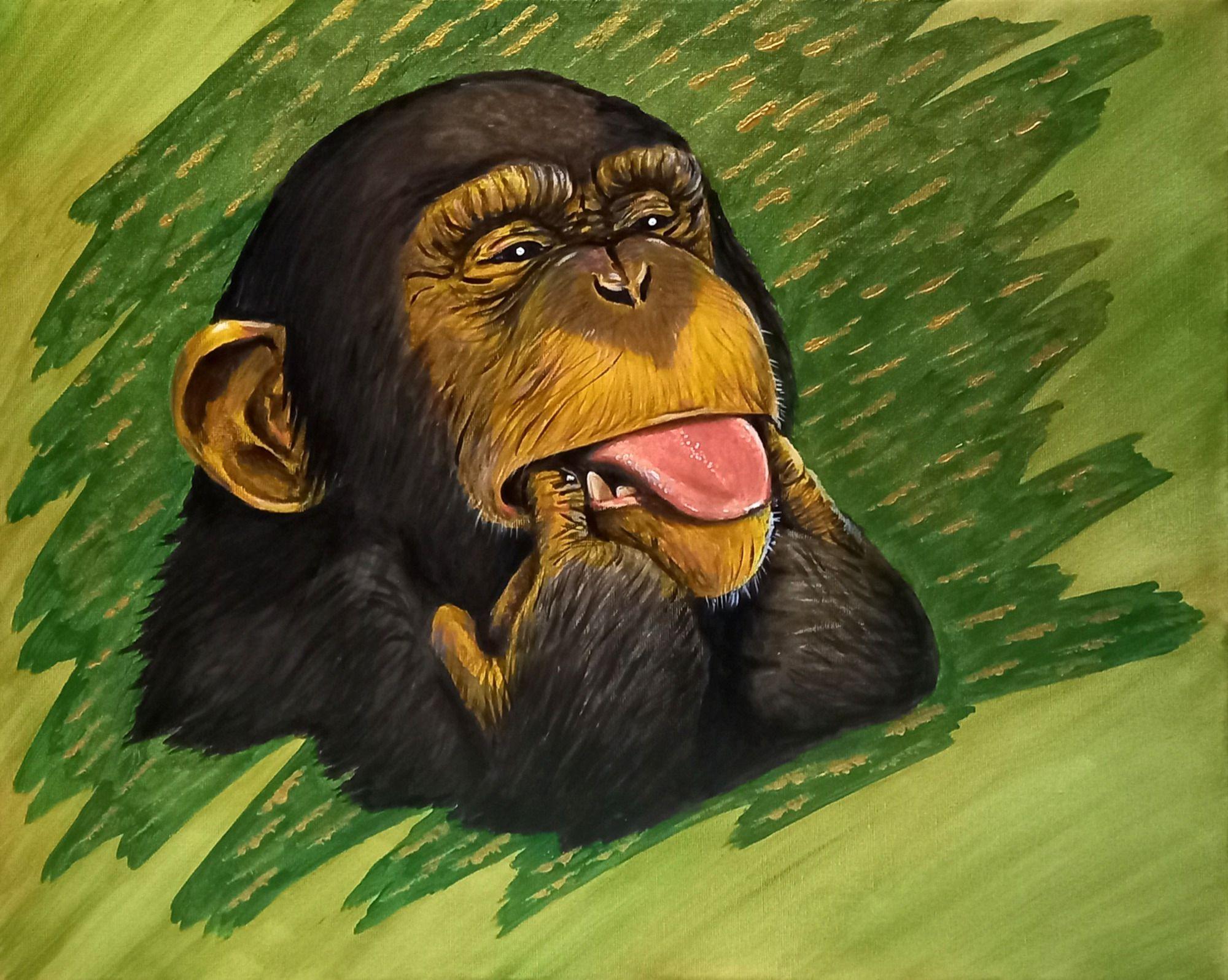 Funny monkey - 1/3