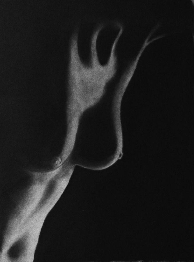 Обнажённая женская грудь